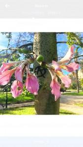 Jardin de Valence-apprentissage-classes-ele