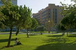 Le camp en été pour les adolescents à Valencia 5